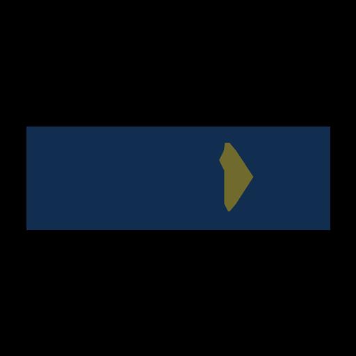 Logo RGX - Market Strategies International