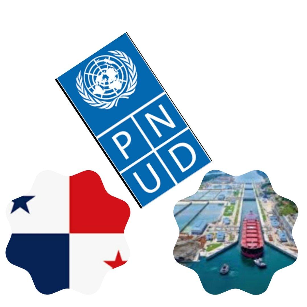 RGX - PNUD - International Market Research Process